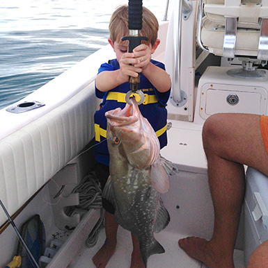 Kd catches giant grouper