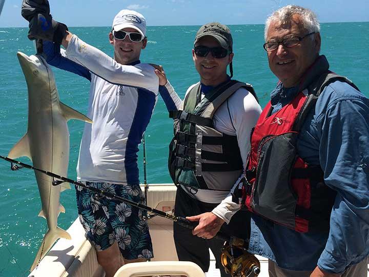 lemon shark caught on a steel cable shark rig