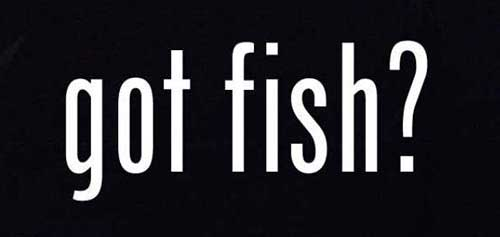got fish decal sticker for truck or car