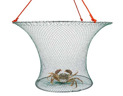 lobster hoop net