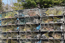 wire mesh lobster pots