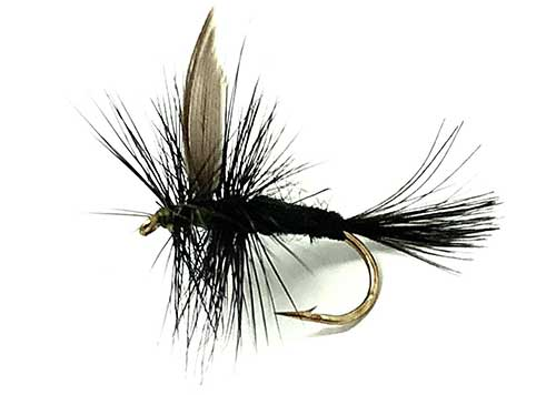 black-gnat-dry-fly-for-grayling