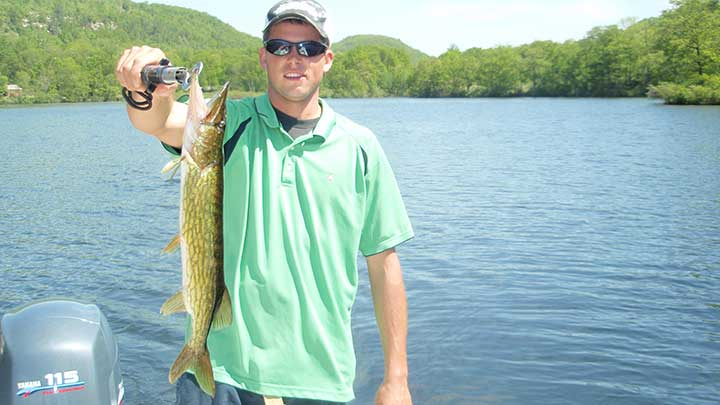 pickerel fish caught in new jersey on a mepps spinner lure
