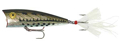 rebel lures surface popper hybrid striped bass lure