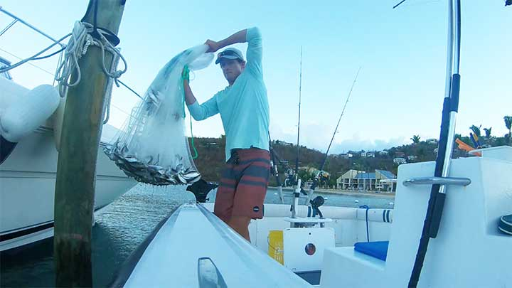 pull the net up and then drop the net slightly to let the bait fill into the pockets of the net