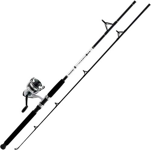 Daiwa D-Wave Saltwater Fishing Rod and Reel