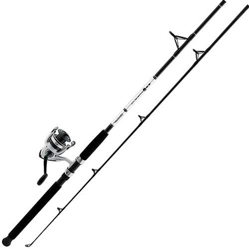 Daiwa D-Wave Surf Fishing Rod and Reel Combo