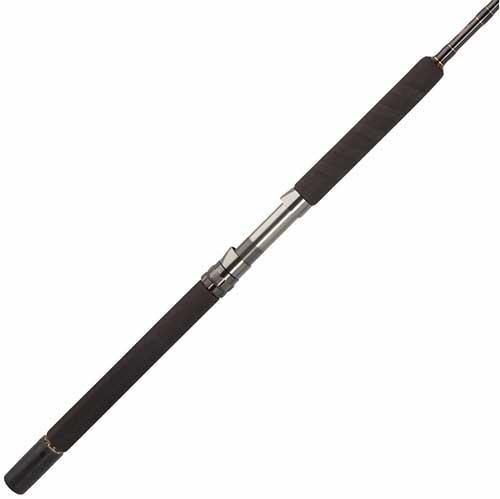 Penn Carnage II Saltwater Spinning Rod