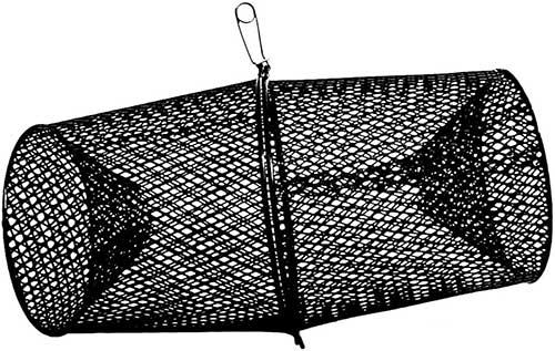 minnow trap
