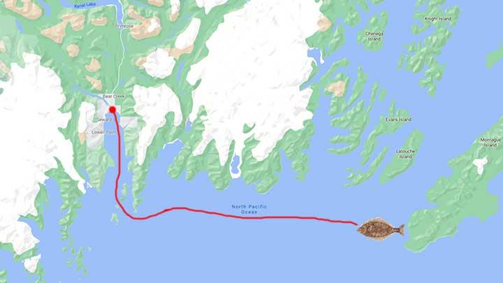 seward fishing map