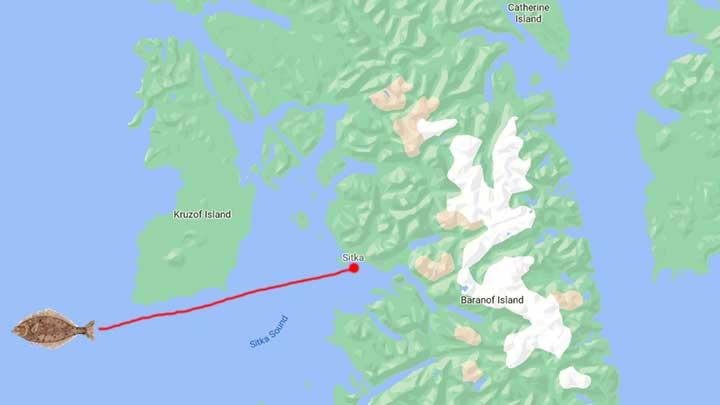 sitka alaska fishing map