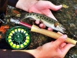 Best Trout Fly Fishing Lures