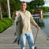 Hybrid Striped Bass Lures